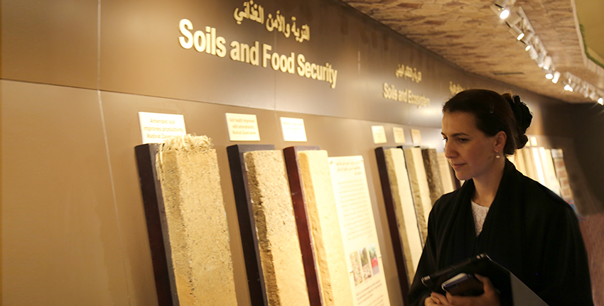 As part of the directives of the wise leadership and the country's research on future food security, H.E. Mariam Bint Mohammed Almheiri will oversee ICBA.