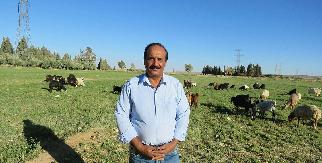 He returned to pursue a project started by his father more than 18 years ago. The Bedouin resettlement project aimed to encourage local people to work in agriculture.
