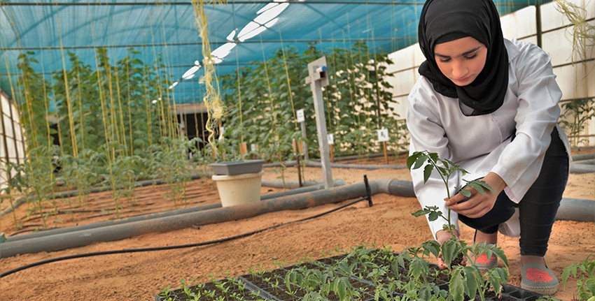Every year ICBA offers several internships and fellowships to young women students and researchers from around the world to conduct studies at its world-class facilities. The center also focuses a great deal of efforts on offering research opportunities to women from the Middle East and North Africa region.