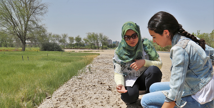 Imane El Majidi, a student from Morocco, received support and guidance from ICBA scientists on her social project involving quinoa to empower women in the region of Marrakesh.