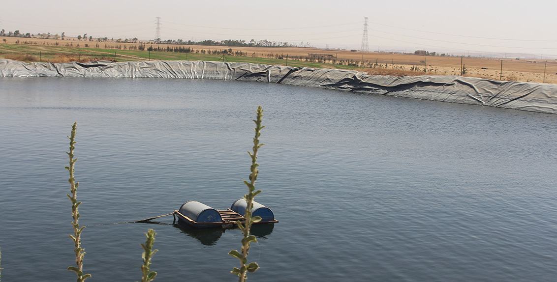Climate change and sporadic rainfall have worsened water scarcity in Jordan, especially in the areas where people rely on farming and livestock to make a living.