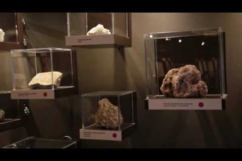 Emirates Soil Museum Opening ceremony teaser