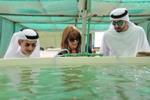 UAE Ministry of Foreign Affairs & International Cooperation visit ICBA