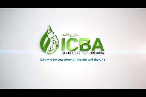 ICBA Video IDB Annual Meeting 2014