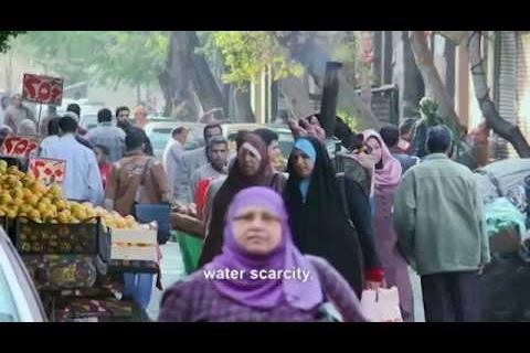 WANA Project video 2015