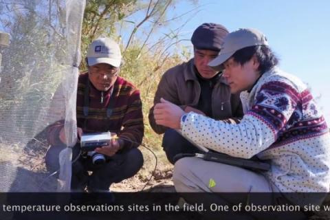 Crop diversification and modeling water management optimization in Amu Darya River Basin