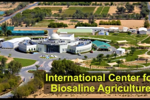ICBA - Agriculture for Tomorrow