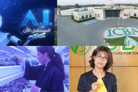 Abu Dhabi TV's program on artificial intelligence features ICBA