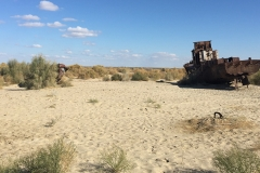 The shrinking of the Aral Sea is widely considered as one of the planet's worst environmental disasters.