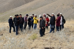 The training course kicked off with a field day trip to a farm in the Mugol village, located in the hilly part of Jizzakh Region. During the visit, participants observed the recently introduced 'seed isles' technology for rangeland rehabilitation in semi-desert foothills.