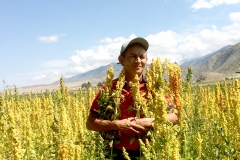 """The pioneer farmer who started growing quinoa in the area is 44-year-old agronomist Azamat Kaseev. His company AgroLead is a major producer of this super crop in the region. It all began in 2012 when he received first seeds of quinoa varieties """"Regalona"""" and """"Titicaca"""" from the Food and Agriculture Organization of the United Nations (FAO). It has taken him around five years to test and adapt the crop to local conditions."""