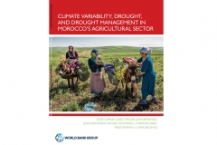 As droughts in Morocco continue to increase in both frequency and intensity, a new research report by the World Bank has found drought is severely affecting the country's water systems and food production.